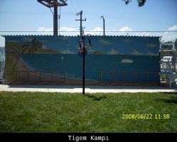 Tigem Kampı - Duvar Resmi